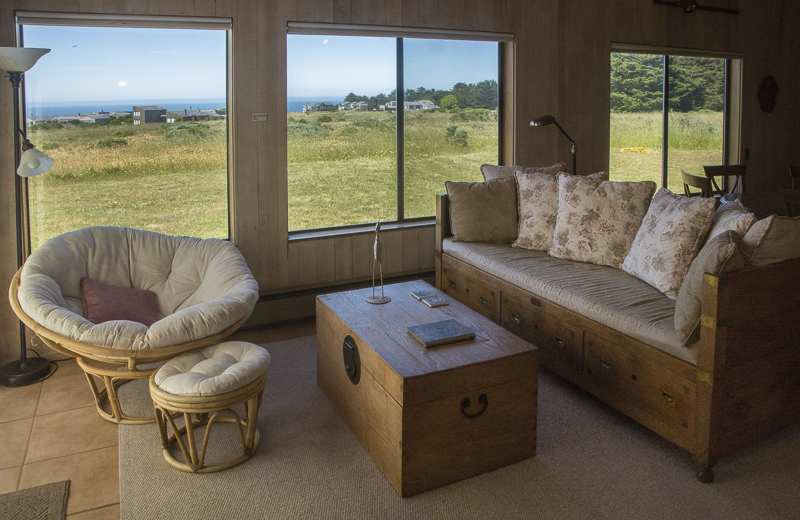 A sofa, large chair with ottoman, a chest serving as coffee table and a view across the meadow to the ocean.