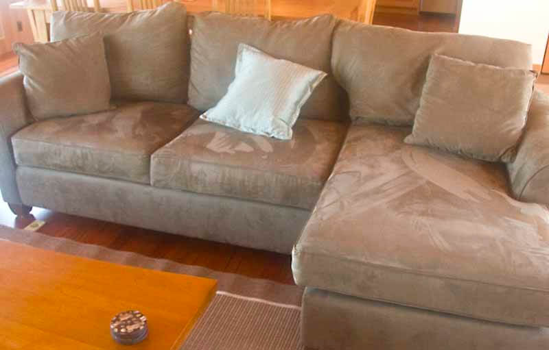 sofa in living room