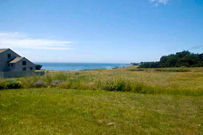 View across the meadow to the ocean.