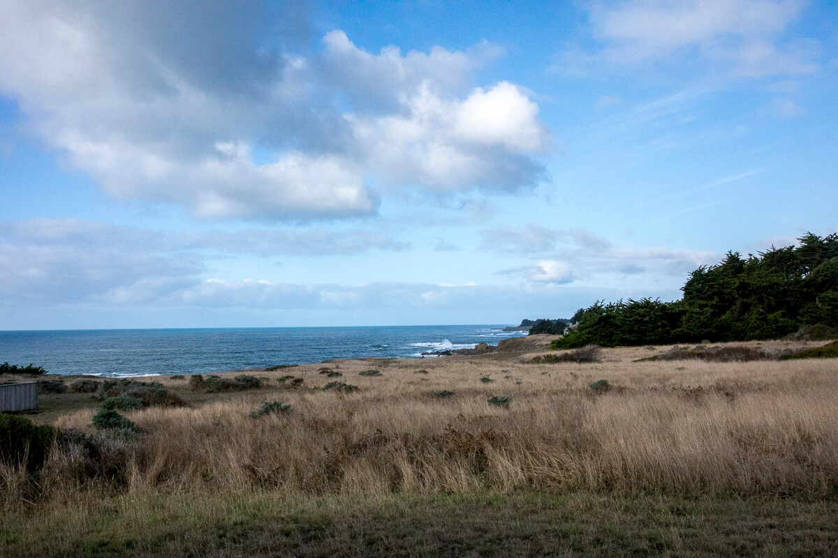 View across meadow to ocean in front of home.