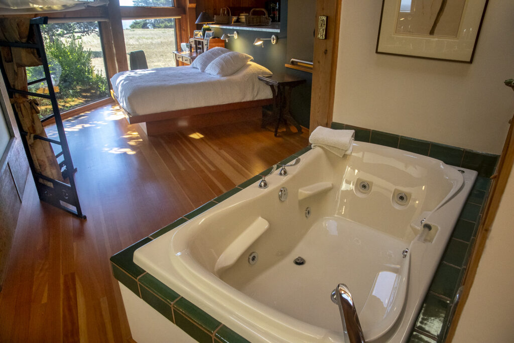 The bath tub in the foreground with the master bedroom in the background.